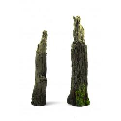 Troncos de árbol.